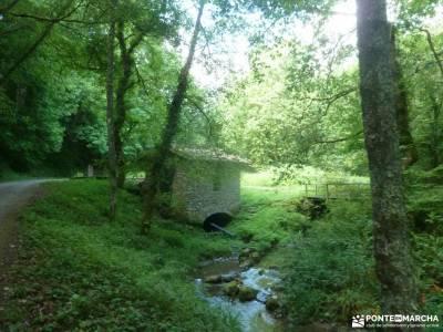 Parque Natural Pagoeta_Valle Leitzaran;rutas a caballo sierra de madrid mercadillo medieval madrid s